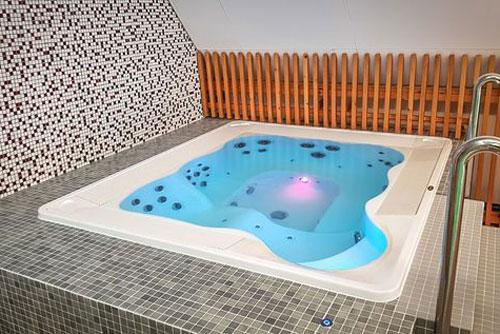 Гидромассажный бассейн Jacuzzi professional