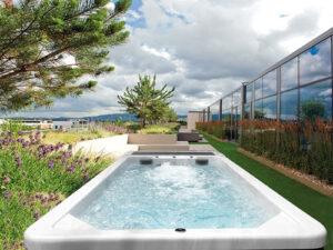 Плавательный бассейн с противотоком частично заглубленный Swim Spa landscape everest
